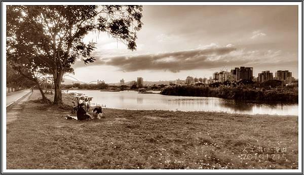 新海濕地_191215_0009.jpg