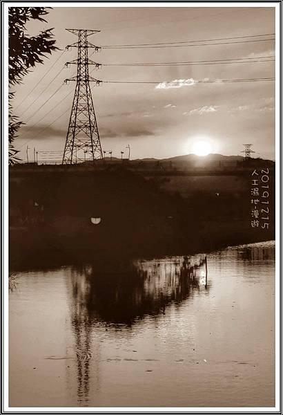 新海濕地_191215_0003.jpg