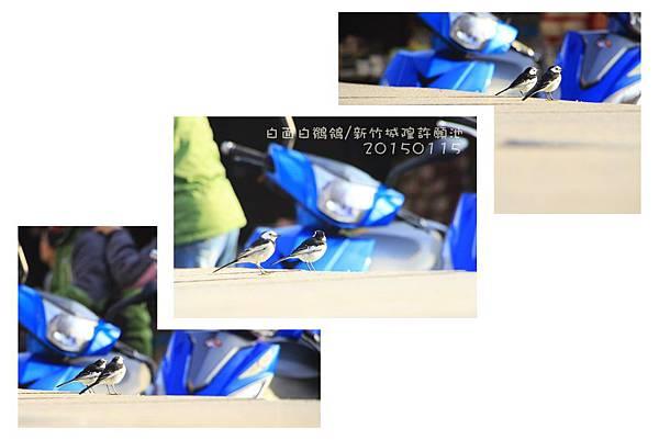 _MG_9009~9017.jpg
