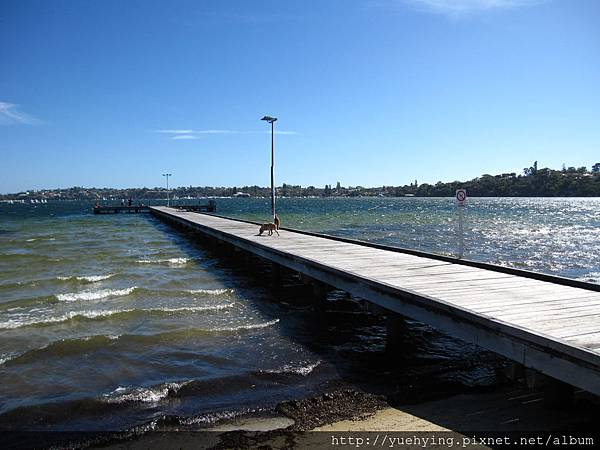 Claremont Jetty17