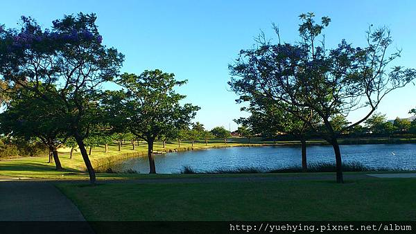 附近的小池塘1