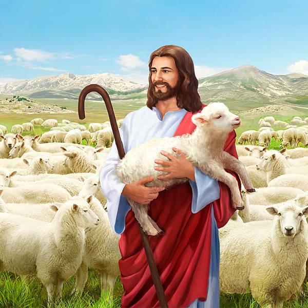 011-迷路羊的比喻4-160512.jpg