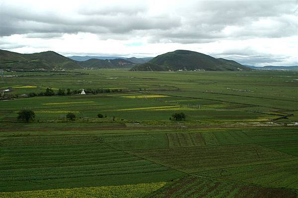 大草原全景