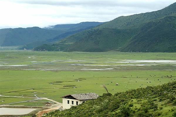 大草原全景1