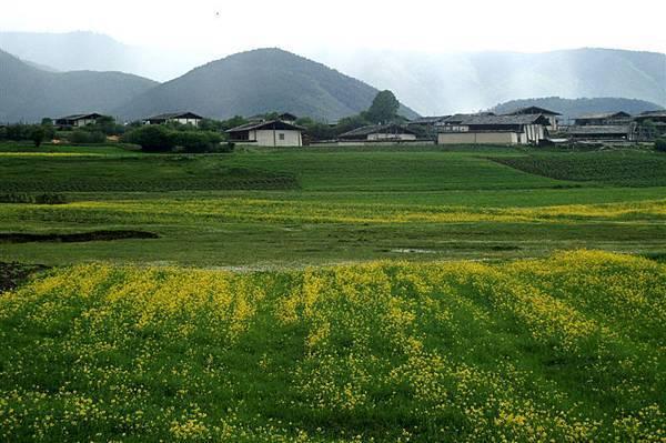 縣城附近_農家與花園