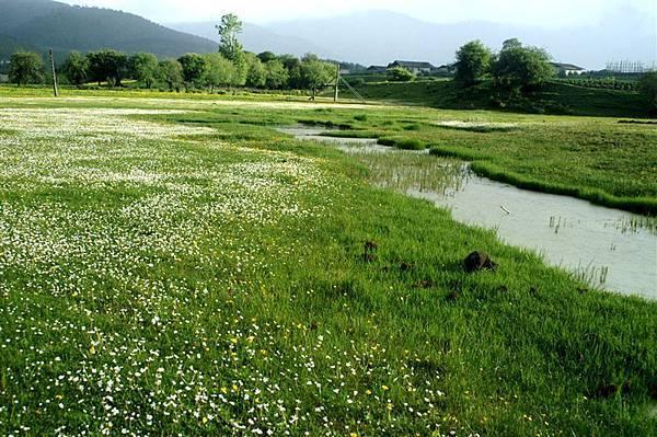 縣城附近_小溪與草原