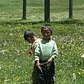天真的藏族小朋友12