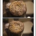 003豐年農場太空包-柳松菇02.jpg