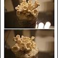 005豐年農場太空包-白雪菇04.jpg