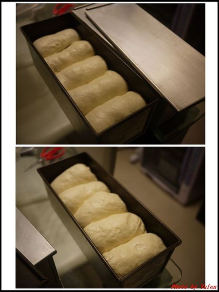 葡萄乾奶酥雙色吐司&熱狗起司片吐司(冷藏中種,26兩)08.jpg