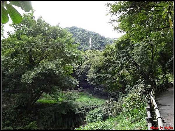 南九州Day1-3-仙巖園080.jpg