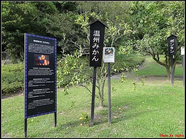南九州Day1-3-仙巖園141.jpg