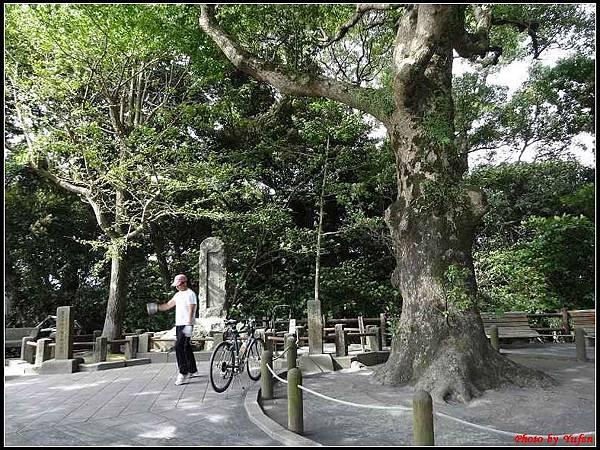 南九州Day2-2-城山公園010.jpg