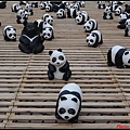 1600熊貓世界之旅010.jpg