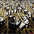 1600熊貓世界之旅059.jpg