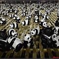 1600熊貓世界之旅060.jpg