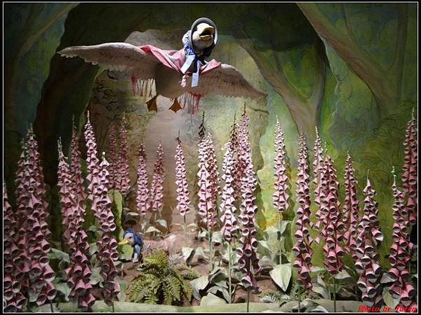 英倫daydaydaydayday5-5彼得兔的故事0039.jpg