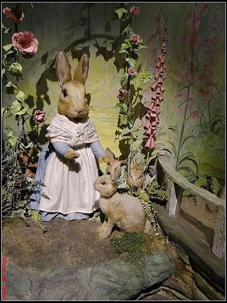 英倫daydaydaydayday5-5彼得兔的故事0095.jpg