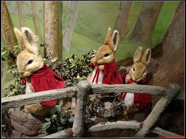 英倫daydaydaydayday5-5彼得兔的故事0109.jpg