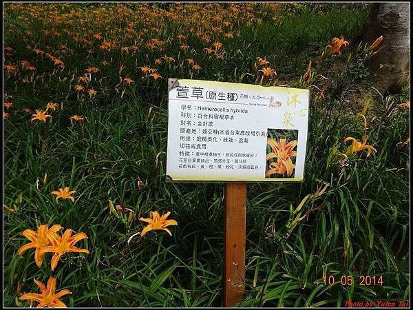 沐心泉0042.jpg