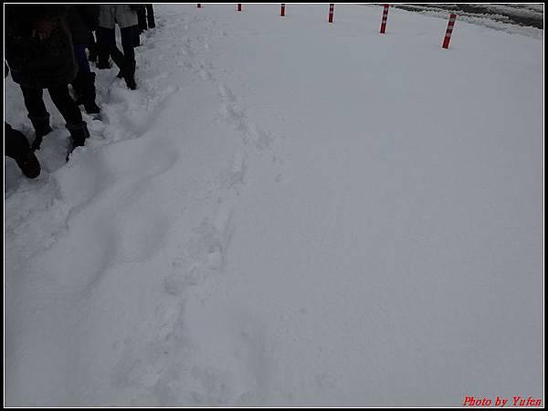 日本day3-柯南(青山剛昌)紀念館0005.jpg
