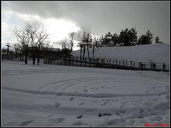 日本day3-鳥取砂丘0007.jpg