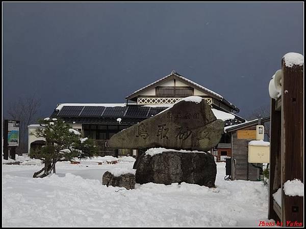 日本day3-鳥取砂丘0009.jpg
