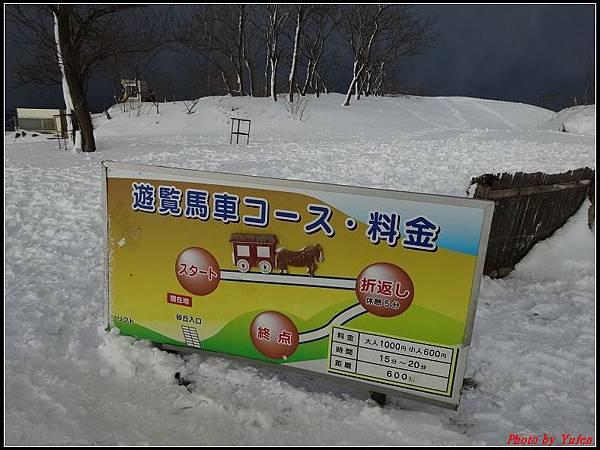 日本day3-鳥取砂丘0011.jpg