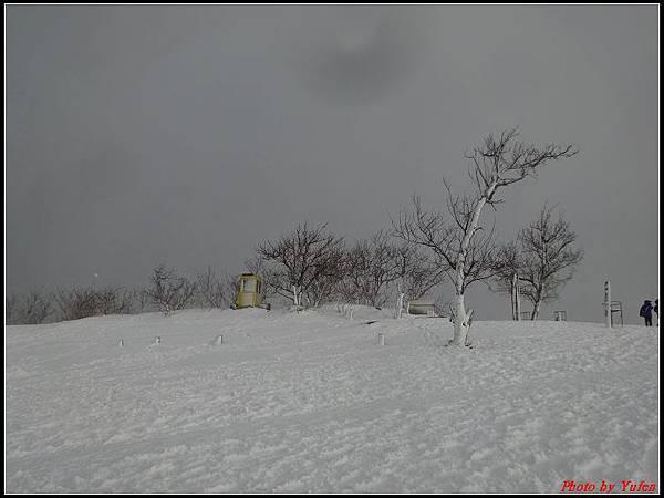 日本day3-鳥取砂丘0037.jpg