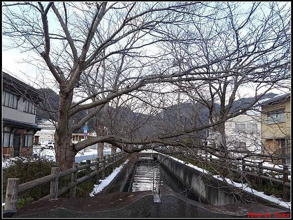 日本day4-鬼太郎街道+水木茂紀念館0202.jpg