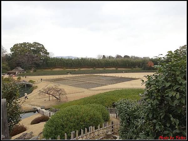 日本day5-岡山後樂園0045.jpg