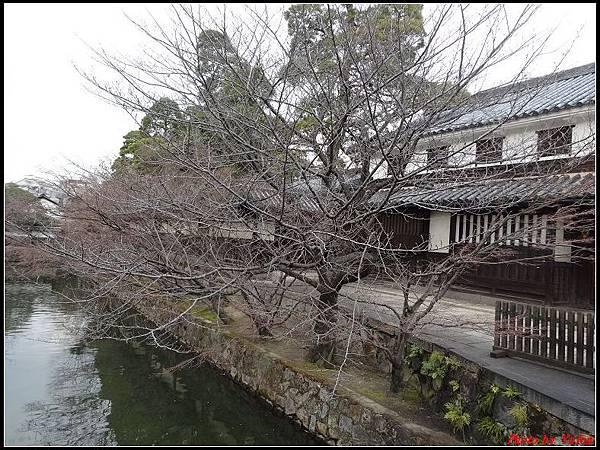 日本day5-倉敷美觀地區0108.jpg