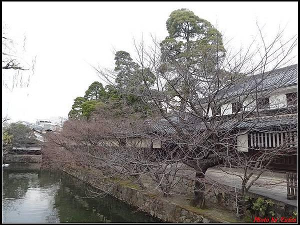 日本day5-倉敷美觀地區0109.jpg