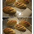 雜糧蔓越莓乳酪歐克麵包05.jpg