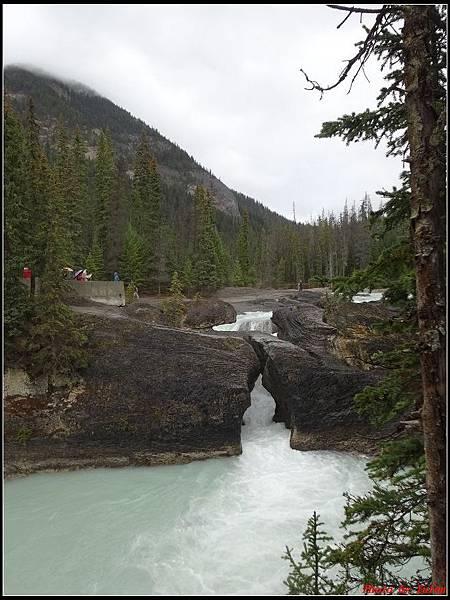 玩美加族-加拿大day4-9天然石橋0008.jpg