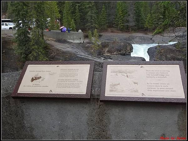 玩美加族-加拿大day4-9天然石橋0010.jpg