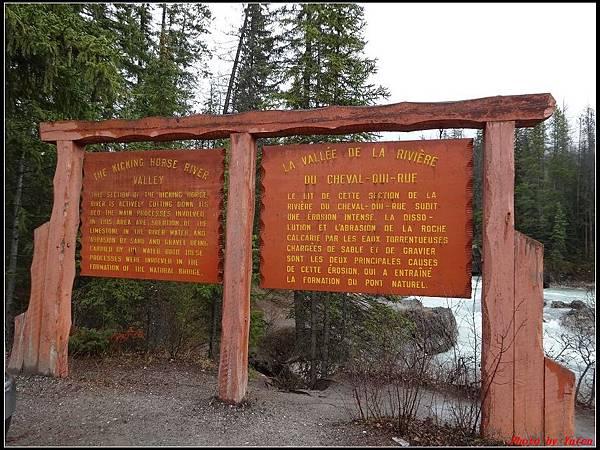 玩美加族-加拿大day4-9天然石橋0028.jpg