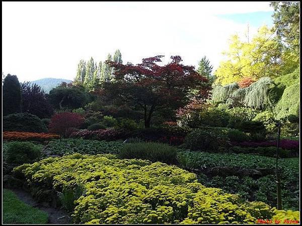 玩美加族-加拿大day7-3布查花園0044(001).jpg