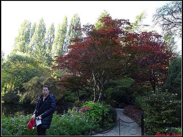 玩美加族-加拿大day7-3布查花園0052(001).jpg