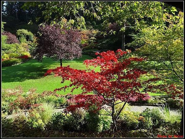 玩美加族-加拿大day7-3布查花園0090(001).jpg