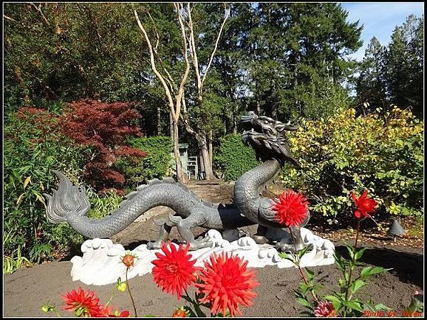 玩美加族-加拿大day7-3布查花園0116(001).jpg