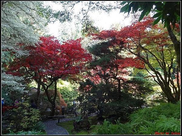 玩美加族-加拿大day7-3布查花園0151(001).jpg