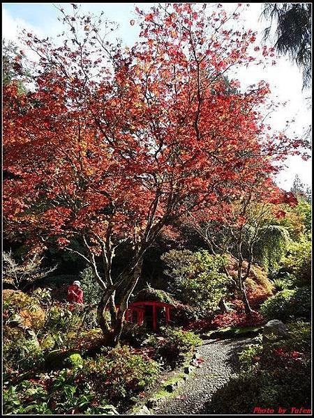 玩美加族-加拿大day7-3布查花園0155(001).jpg