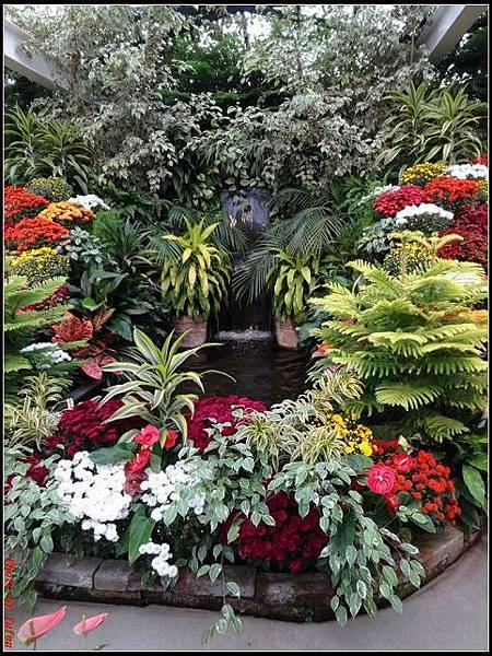 玩美加族-加拿大day7-3布查花園0223(001).jpg