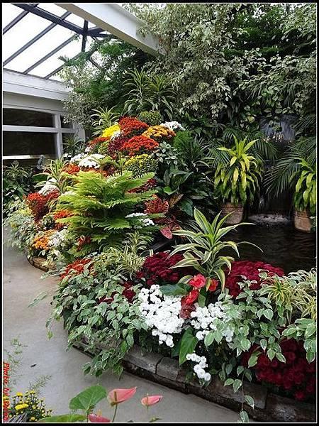 玩美加族-加拿大day7-3布查花園0224(001).jpg