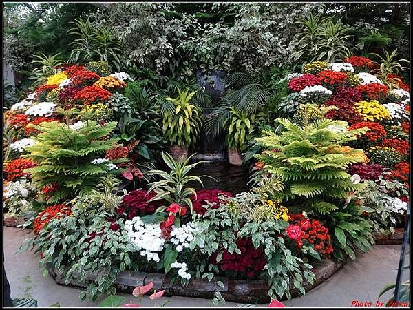 玩美加族-加拿大day7-3布查花園0225(001).jpg