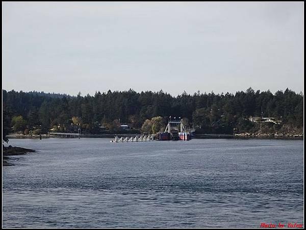 玩美加族-加拿大day7-5BC渡輪0208(001).jpg