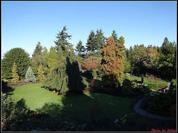 玩美加族-加拿大day8-2伊麗莎白女皇公園‧0051(001).jpg