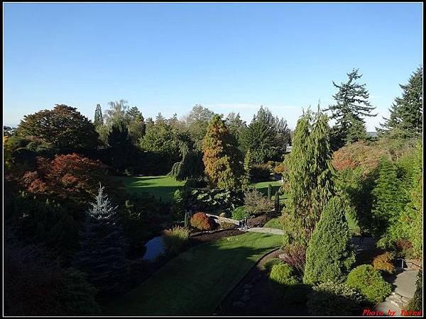 玩美加族-加拿大day8-2伊麗莎白女皇公園‧0062(001).jpg