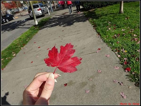 玩美加族-加拿大day8--5午餐0019(001).jpg
